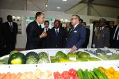 HM the King inaugurates in Meknes 8th Agriculture Fair - 24 april 2013