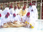 M'Diq - HM King Mohammed VI, Commander of the Faithful, Performs the sacrifice ritual
