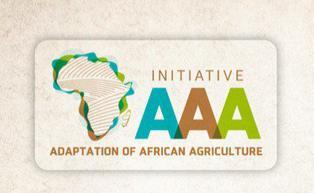 Sommet de Haut niveau à Marrakech sur l'Initiative pour l'Adaptation de l'Agriculture Africaine aux changements climatique
