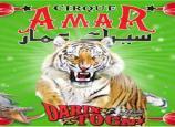 Cirque Amar : Darix Togni