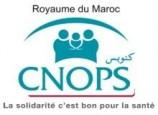 صندوق الوطني لمنظمات الاحتياط الاجتماعي