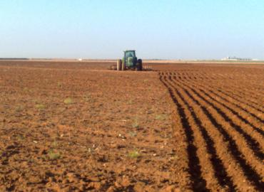 Lancement de la nouvelle campagne agricole 2013-2014