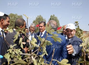 M. Akhannouch visite à Taounate plusieurs projets agricoles dans le cadre du Plan Maroc Vert