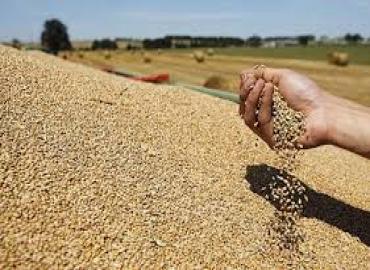 تحديد الحصص الشهرية من الدقيق المدعم من القمح اللين للعمالات والأقاليم برسم الأسدس الثاني من 2014