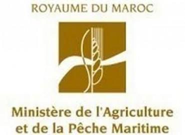 Ministère de l'Agriculture: il n'y a pas eu de transactions financières entre l'ONSSA et la FIVIAR