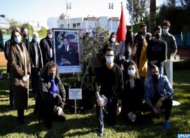Plantado un olivo en Casablanca como signo de fraternidad entre musulmanes y judíos