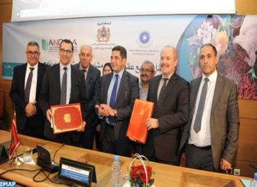 Signature à Rabat des contrats de financement de plusieurs projets de recherche pour valoriser les plantes médicinales