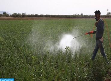 (أونسا) يعيد تقييم التراخيص الممنوحة للمبيدات الزراعية بانتظام
