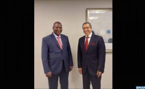 El embajador Hilale recibido en audiencia por el presidente de la República Centroafricana