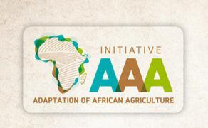 """لقاء رفيع المستوى بمراكش حول مبادرة """"تكييف الفلاحة بإفريقيا مع التغيرات المناخية"""""""