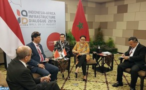 Africa-Indonesia Partnership Must Be Based on Win-Win Logic, Official