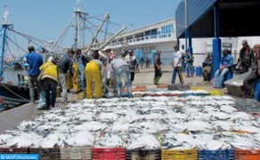 Spain Satisfied with Understanding between Morocco and EU on Future Fisheries Agreement
