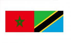 Visite officielle de SM le Roi en Tanzanie